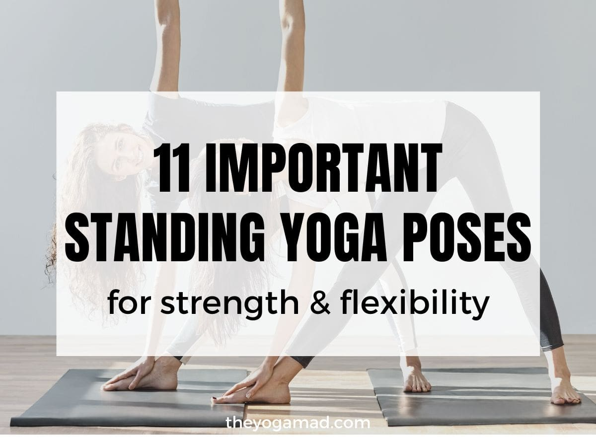 50 Must Know Standing Yoga Poses for Beginners [50 Guide]