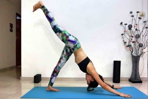 Three legged downward dog (Eka pada adho mukha svanasana)