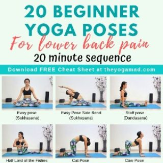20 Beginner Yoga Stretches for Lower Back Pain