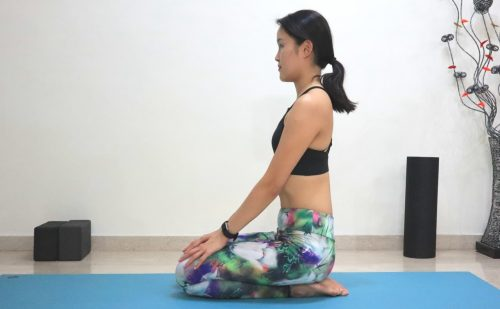 Thunderbolt pose [Vajrasana] - Yoga poses for beginners (see more at https://theyogamad.com)