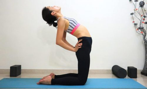 Camel Pose Variation [Ustrasana] - Get step-by-step instructions on yoga poses at https://theyogamad.com