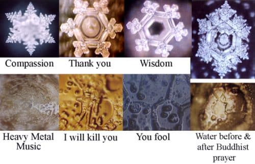 Emoto Effects of Words on Water Crystals