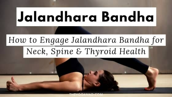 Bandhas For Beginners: How to Practise Jalandhara Bandha for Neck, Spine and Thyroid Health | Jalandhara Bandha is one of the three major Bandhas and provides many benefits for the yogi. Learn about the physical, mental and energetic benefits of Jalandhara Bandha and how you can access these benefits through your yoga practice. #yogaforbeginners #bandhas