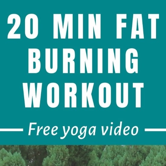 Read more about the article Yoga Workout for Fat Burn & Toning (Free Video)