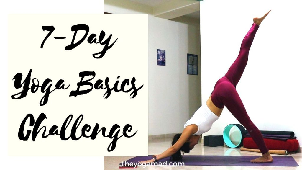 Join the 7-Day Yoga Basics Challenge Here