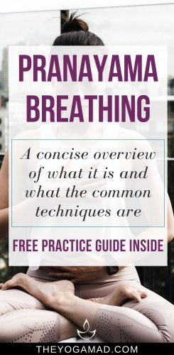 Pranayama Breathing Introduction