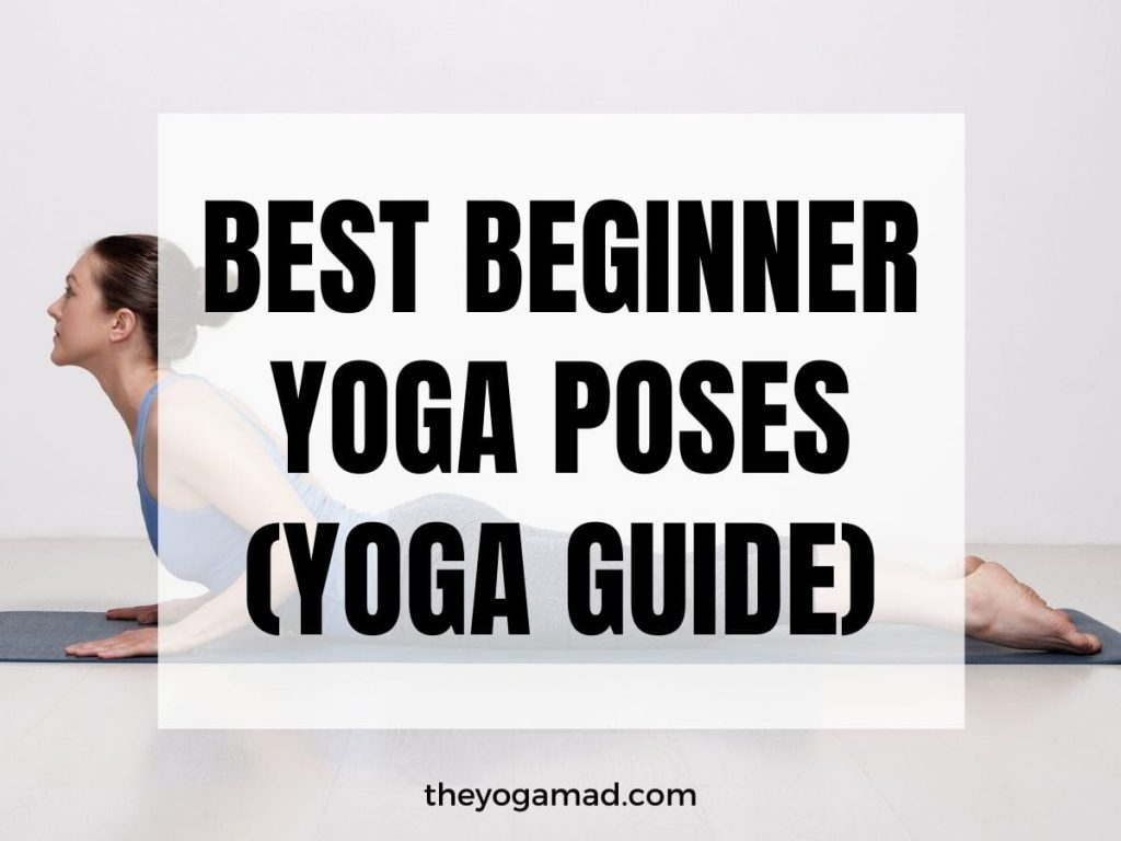 Read more about the article 8 Best Beginner Yoga Poses to Get Started