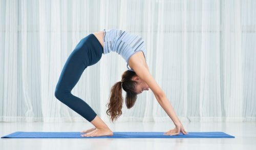 Read more about the article What Does Asana Mean in Yoga?
