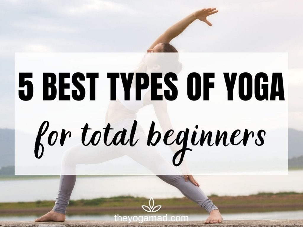 Read more about the article 5 Best Types of Yoga for Total Beginners